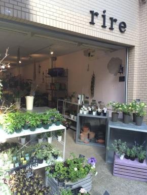 花の店「rire(リール)」